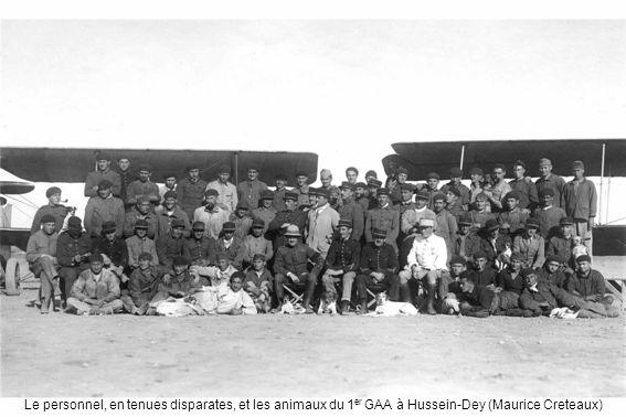 Le personnel, en tenues disparates, et les animaux du 1 er GAA à Hussein-Dey (Maurice Creteaux)