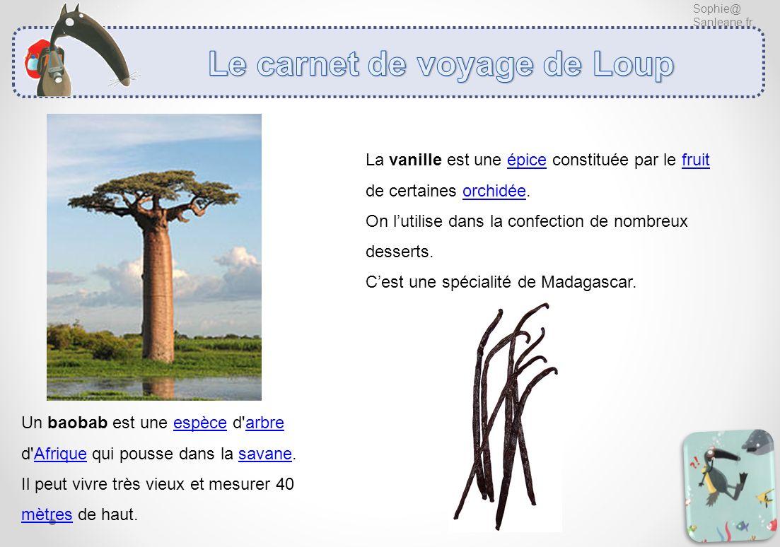 Sophie@ Sanleane.fr Un baobab est une espèce d'arbre d'Afrique qui pousse dans la savane. Il peut vivre très vieux et mesurer 40 mètres de haut. La va