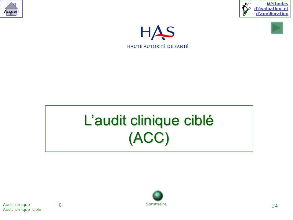 Méthodes dévaluation et damélioration © Accueil Audit clinique Audit clinique ciblé 24 Laudit clinique ciblé (ACC) Sommaire