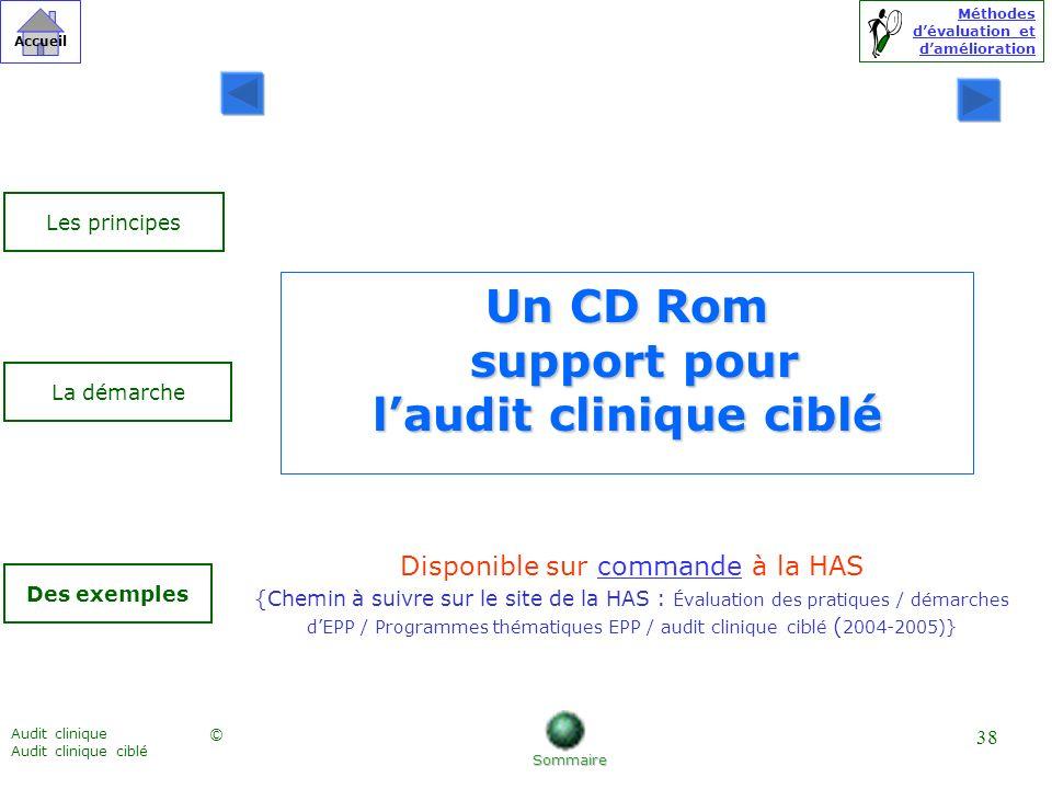 Méthodes dévaluation et damélioration © Accueil Audit clinique Audit clinique ciblé 38 Un CD Rom support pour laudit clinique ciblé Sommaire Des exemp