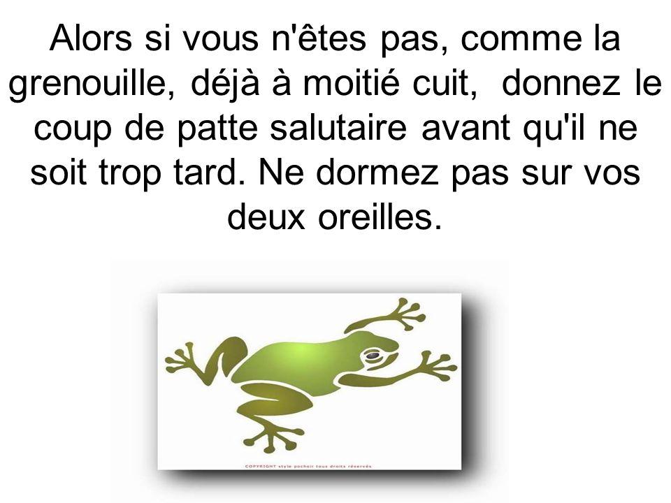 Alors si vous n'êtes pas, comme la grenouille, déjà à moitié cuit, donnez le coup de patte salutaire avant qu'il ne soit trop tard. Ne dormez pas sur
