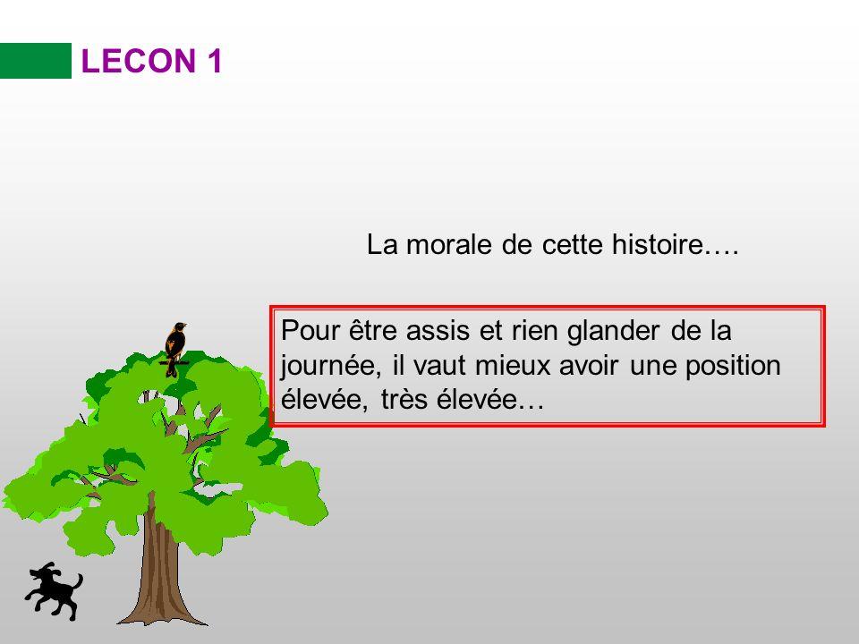 «Jaimerai bien pouvoir grimper en haut de cet arbre» soupira la dinde….