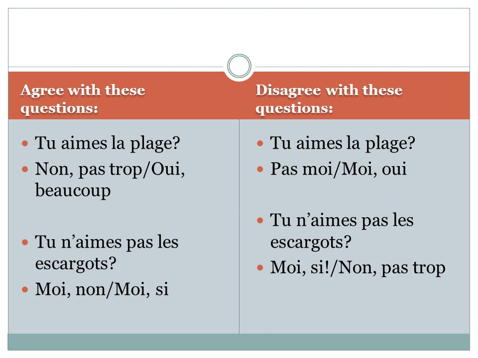 Agree with these questions: Disagree with these questions: Tu aimes la plage.