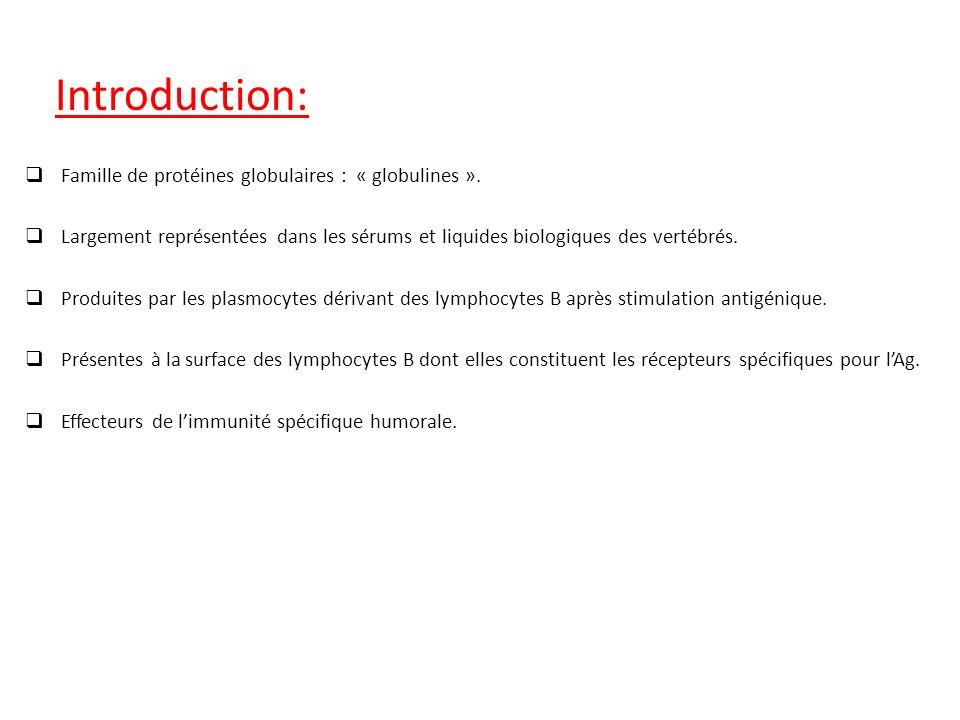 Famille de protéines globulaires : « globulines ». Largement représentées dans les sérums et liquides biologiques des vertébrés. Produites par les pla