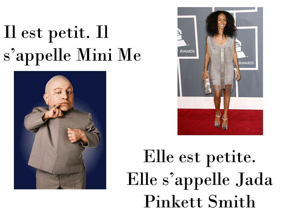 Il est petit. Il sappelle Mini Me Elle est petite. Elle sappelle Jada Pinkett Smith