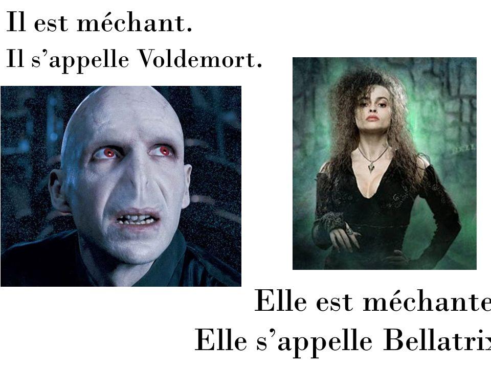 Il est méchant. Il sappelle Voldemort. Elle est méchante. Elle sappelle Bellatrix