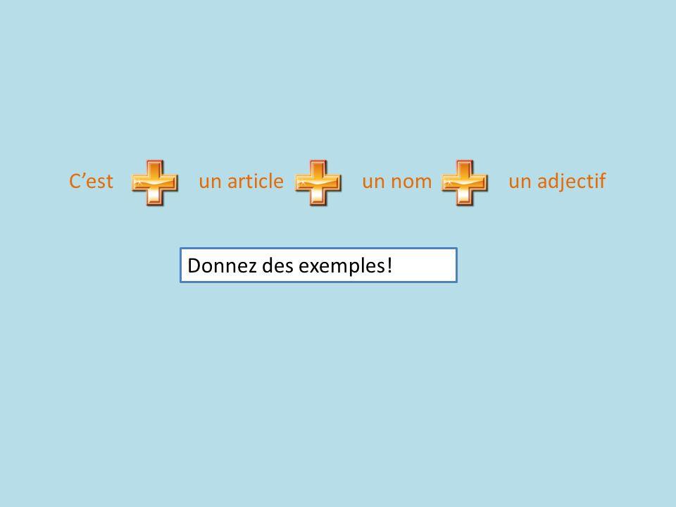 Cestun articleun nomun adjectif Donnez des exemples!