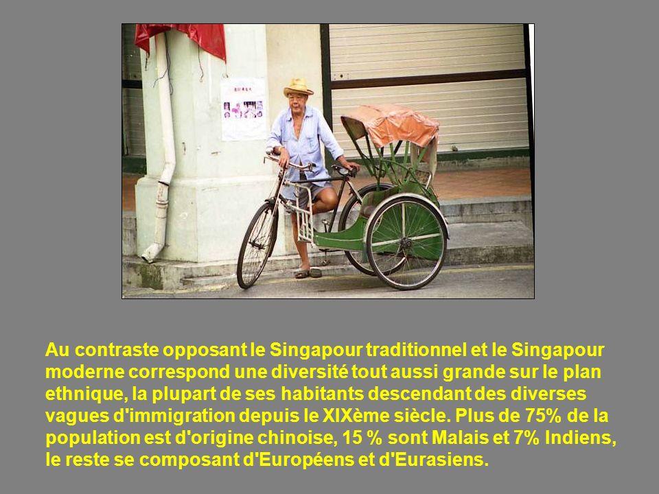 Au contraste opposant le Singapour traditionnel et le Singapour moderne correspond une diversité tout aussi grande sur le plan ethnique, la plupart de ses habitants descendant des diverses vagues d immigration depuis le XIXème siècle.