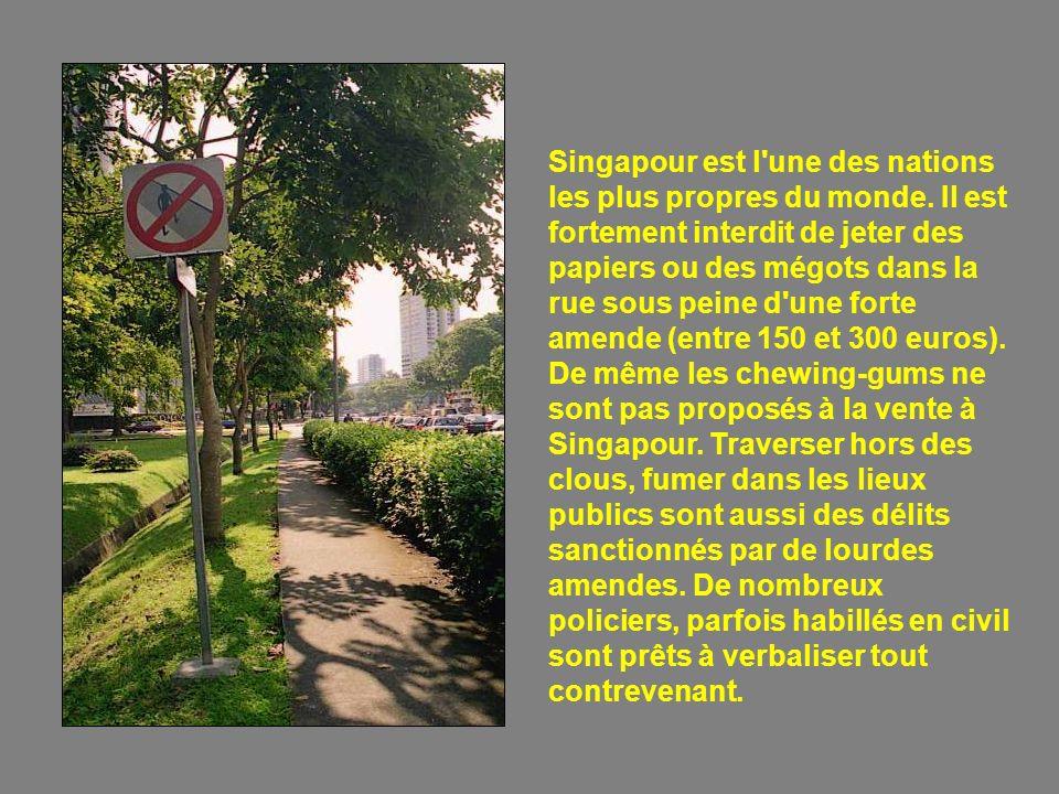 Singapour est l une des nations les plus propres du monde.