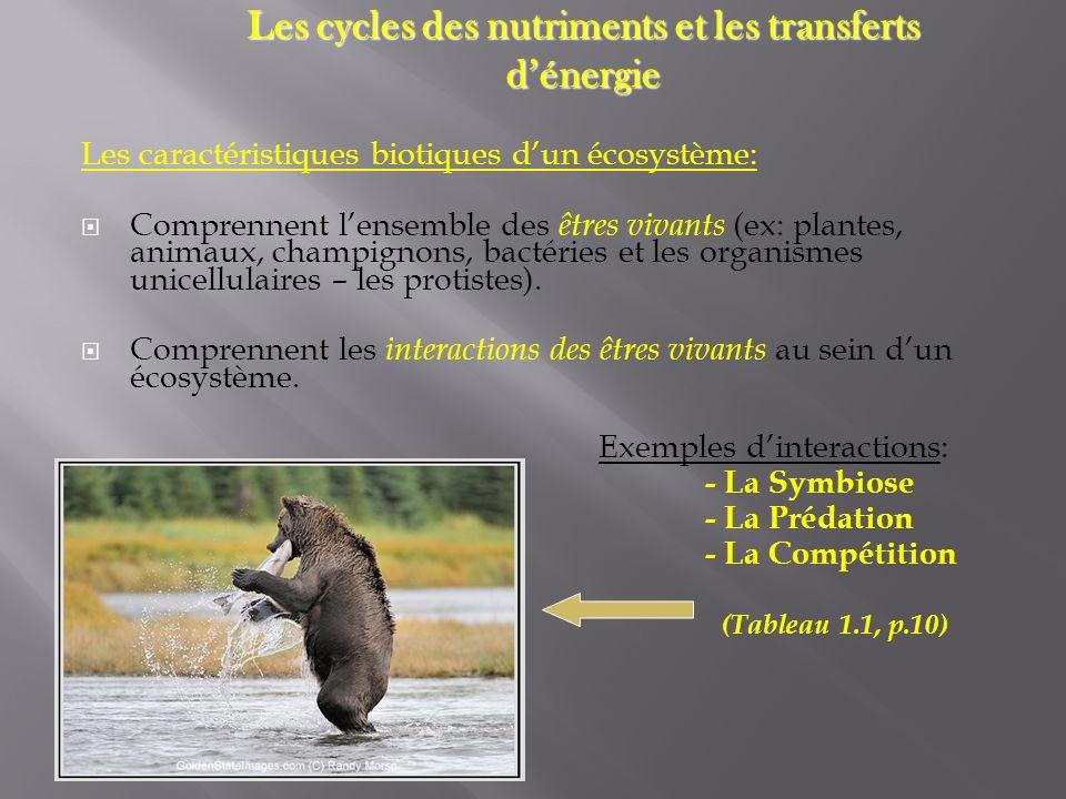 Les caractéristiques biotiques dun écosystème: Comprennent lensemble des êtres vivants (ex: plantes, animaux, champignons, bactéries et les organismes
