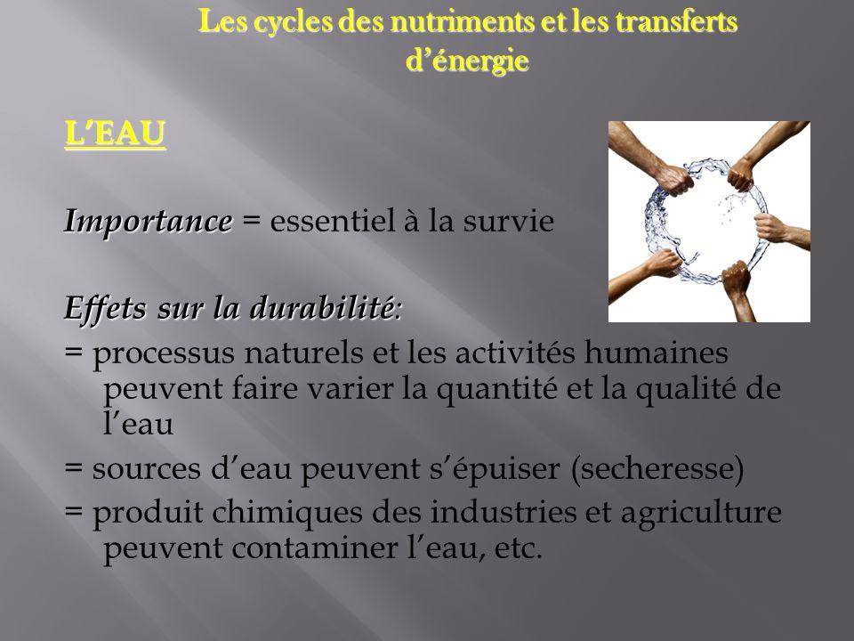 LEAU Importance Importance = essentiel à la survie Effets sur la durabilité : = processus naturels et les activités humaines peuvent faire varier la q
