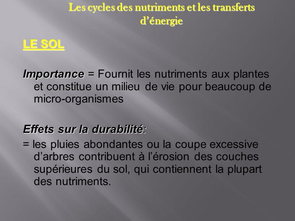 Les cycles des nutriments et les transferts dénergie LE SOL Importance Importance = Fournit les nutriments aux plantes et constitue un milieu de vie p