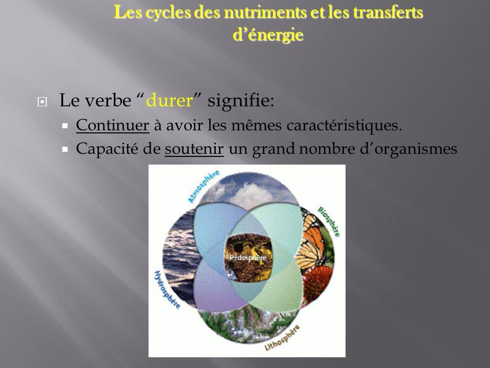 Les cycles des nutriments et les transferts dénergie LES NUTRIMENTS Importance Importance = Important pour la croissance (ex: plantes on besoin dazote et de phosphore) Effets sur la durabilité: = Les activités humaines peuvent influencer léquilibre du niveau des nutriments dans un écosystèmes