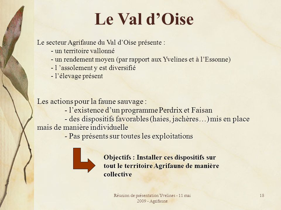 Réunion de présentation Yvelines - 11 mai 2009 - Agrifaune 18 Le Val dOise Le secteur Agrifaune du Val dOise présente : - un territoire vallonné - un