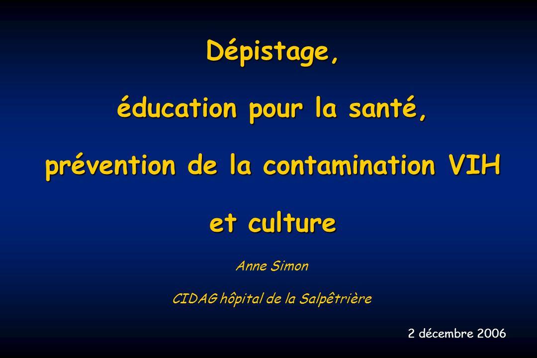 Dépistage, éducation pour la santé, prévention de la contamination VIH et culture Anne Simon CIDAG hôpital de la Salpêtrière 2 décembre 2006