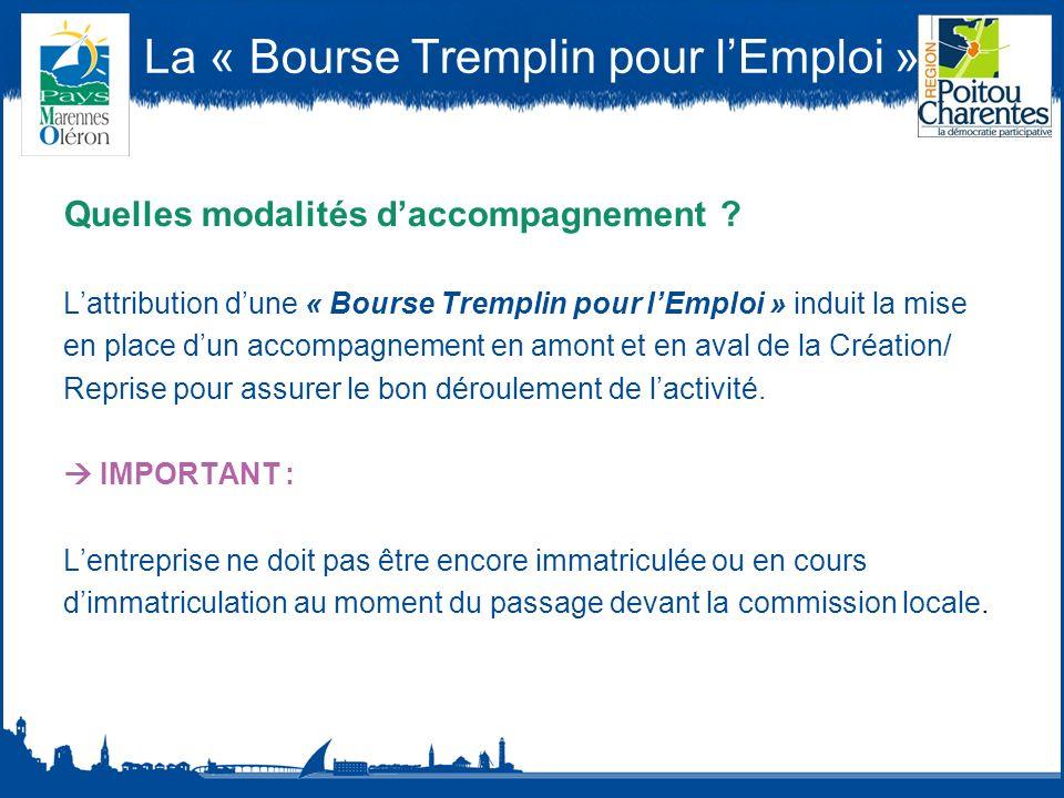 La « Bourse Tremplin pour lEmploi » Quelles modalités daccompagnement .