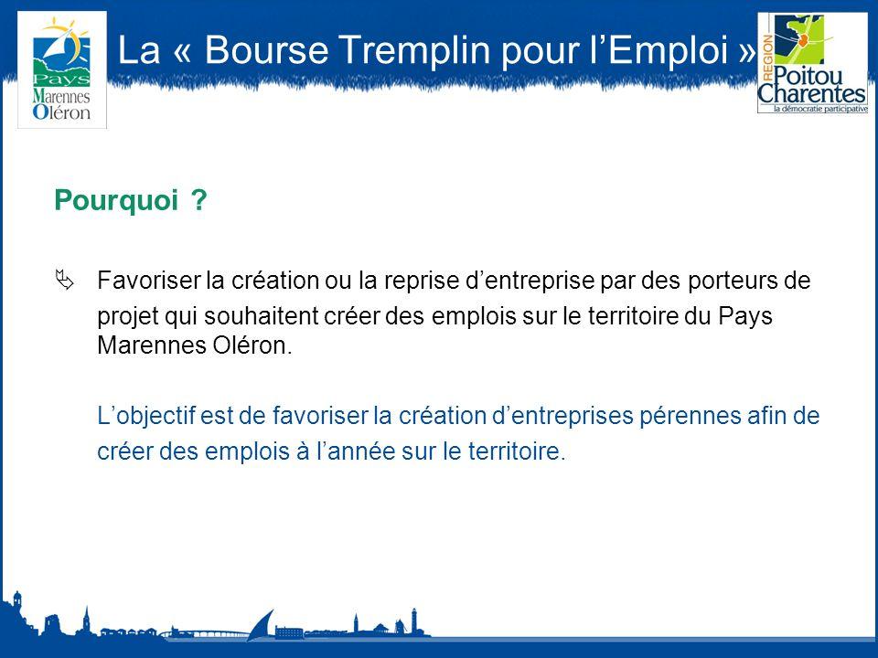 La « Bourse Tremplin pour lEmploi » Pourquoi .