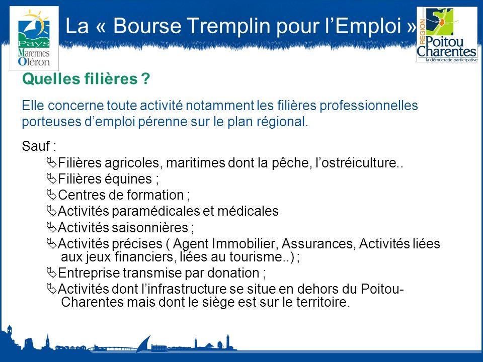 La « Bourse Tremplin pour lEmploi » Quel montant et quelles modalités de versement de l aide .