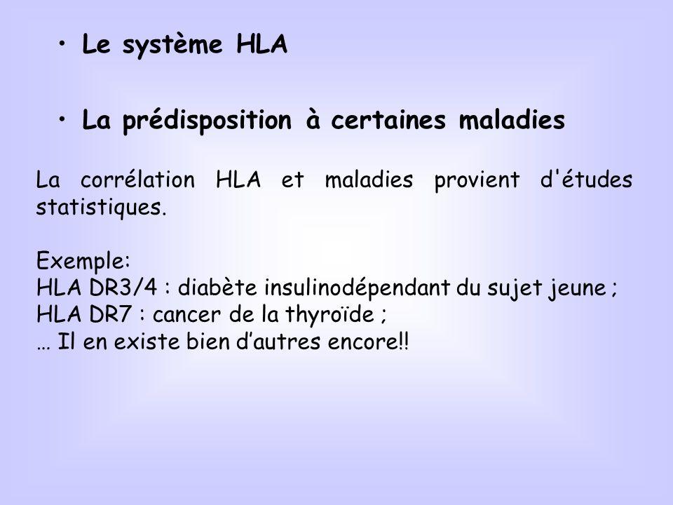 Le système HLA La prédisposition à certaines maladies La corrélation HLA et maladies provient d'études statistiques. Exemple: HLA DR3/4 : diabète insu