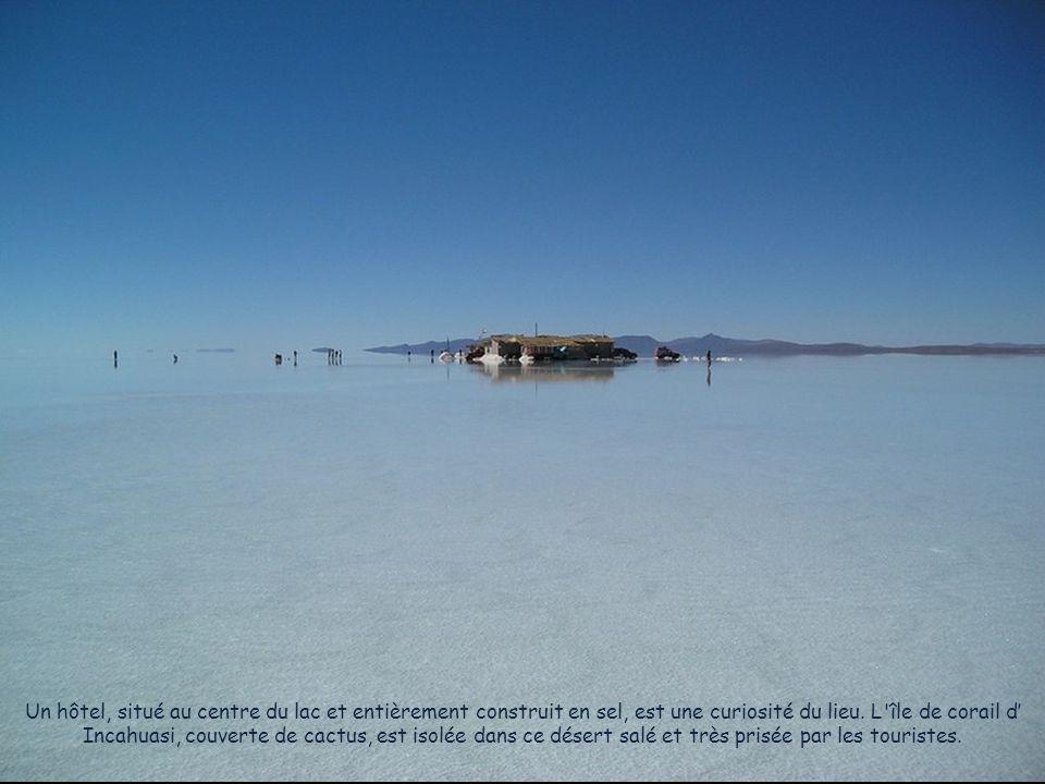 Il existe à peu près 11 couches de sel, avec des épaisseurs qui varient entre deux et dix mètres. La croûte qui se trouve sur la surface a une épaisse