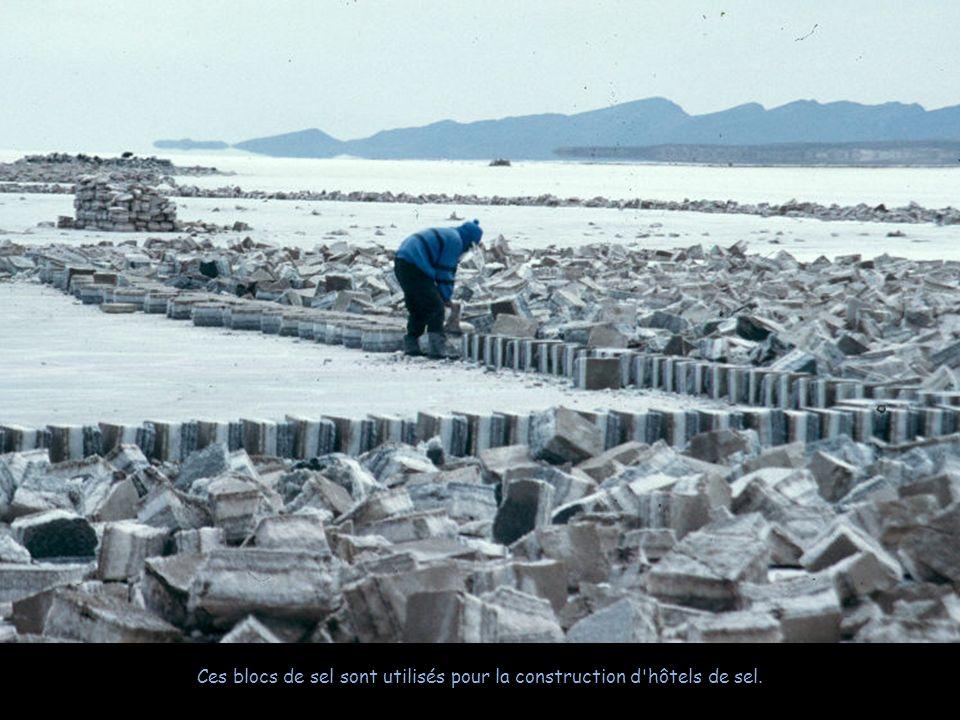 La métode traditionnelle de production du sel consiste lentasser en petis tas pour que leau sévapore et pour faciliter le transport.
