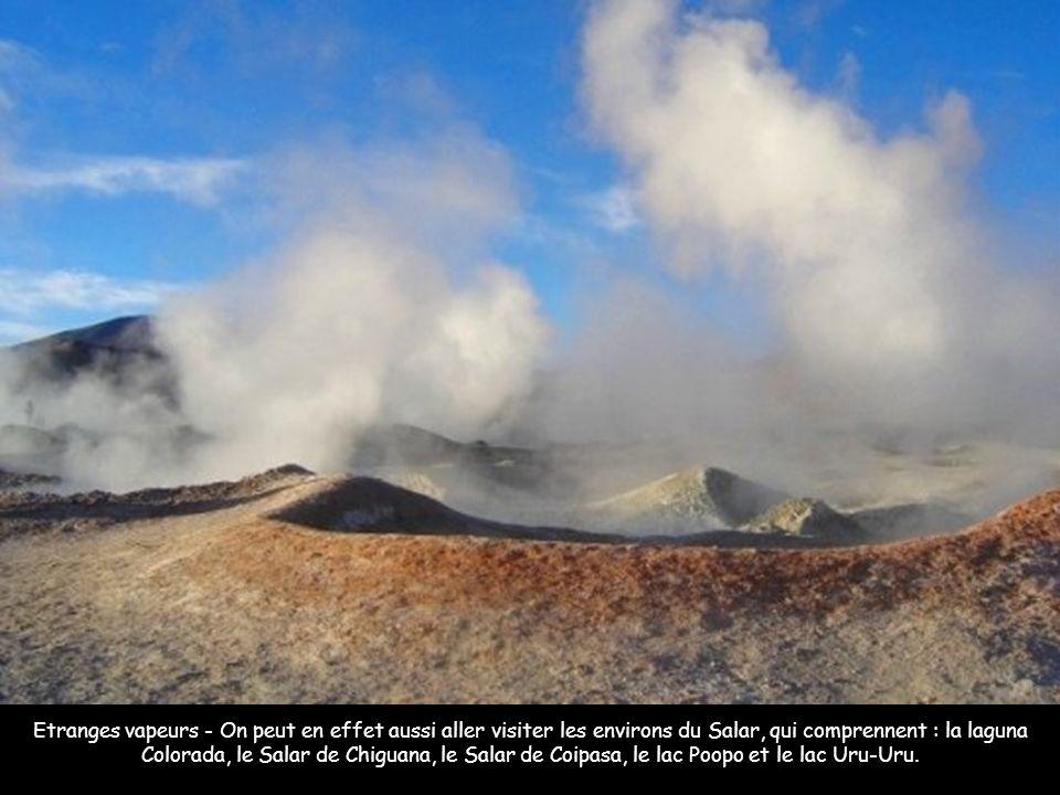 Neige, Sel ou terre - Le Salar est situé dans le fameux Altiplano : ce haut plateau à 3 500 m d'altitude s'étend en effet de la frontière péruvienne,