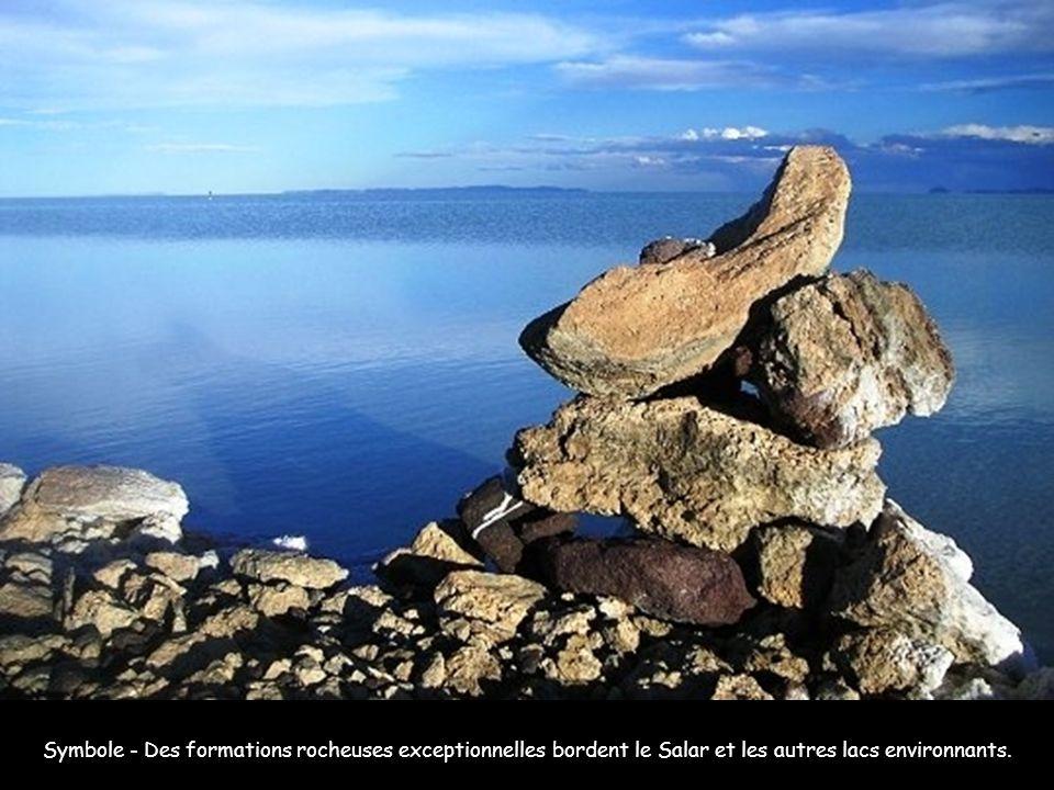 Etranges vapeurs - On peut en effet aussi aller visiter les environs du Salar, qui comprennent : la laguna Colorada, le Salar de Chiguana, le Salar de