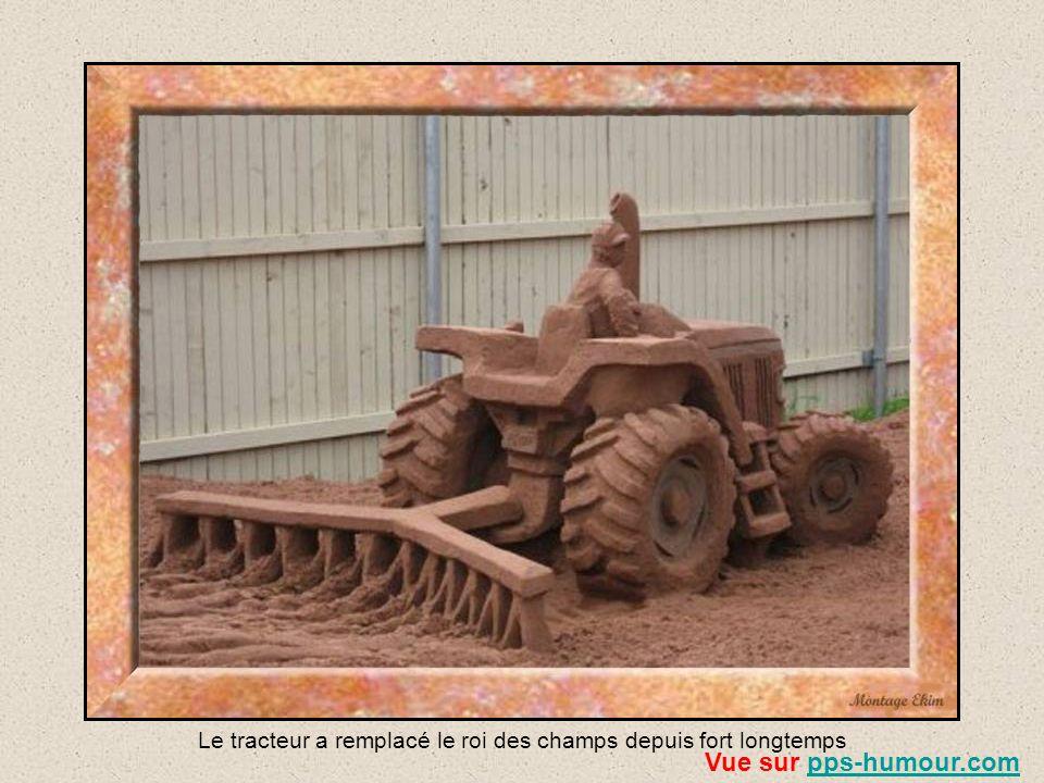 Il faut plus de 3000 tonnes de sable rouge local pour créer ces magnifiques sculptures. Puis elles sont enduites dun savant mélange de colle et deau a