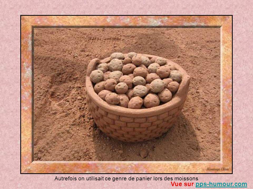 La pomme de terre, une des principales industries: ici la plantation dun champ Vue sur pps-humour.compps-humour.com