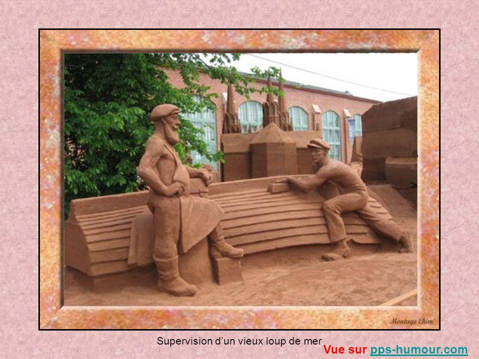 Supervision dun vieux loup de mer Vue sur pps-humour.compps-humour.com