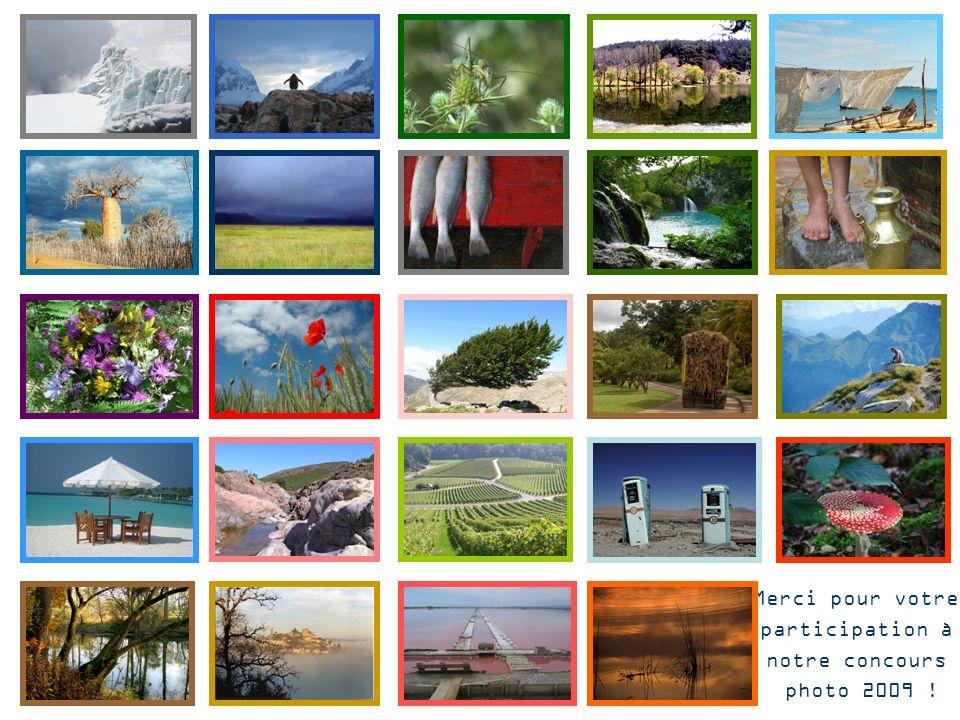 Merci pour votre participation à notre concours photo 2009 !
