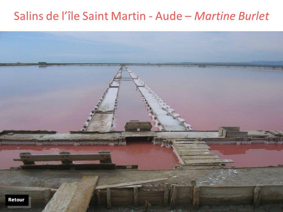 Salins de lîle Saint Martin - Aude – Martine Burlet Retour