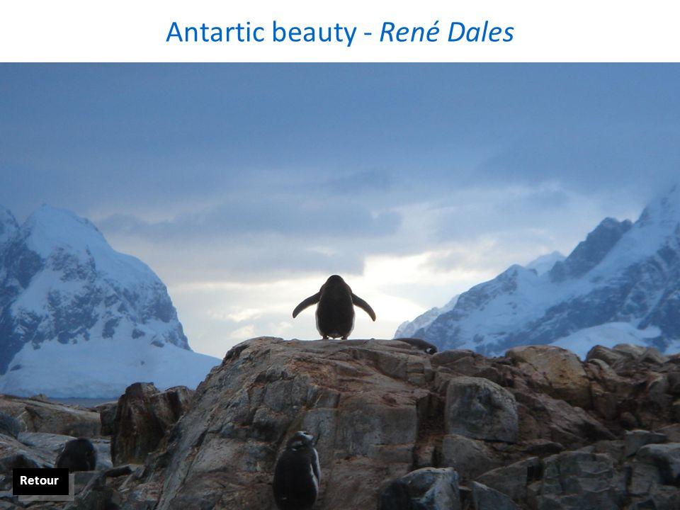 La nature et Moi ! Laragne - Sandrine Dudragne Retour