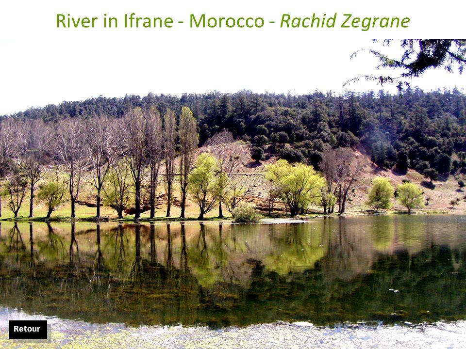 River in Ifrane - Morocco - Rachid Zegrane Retour
