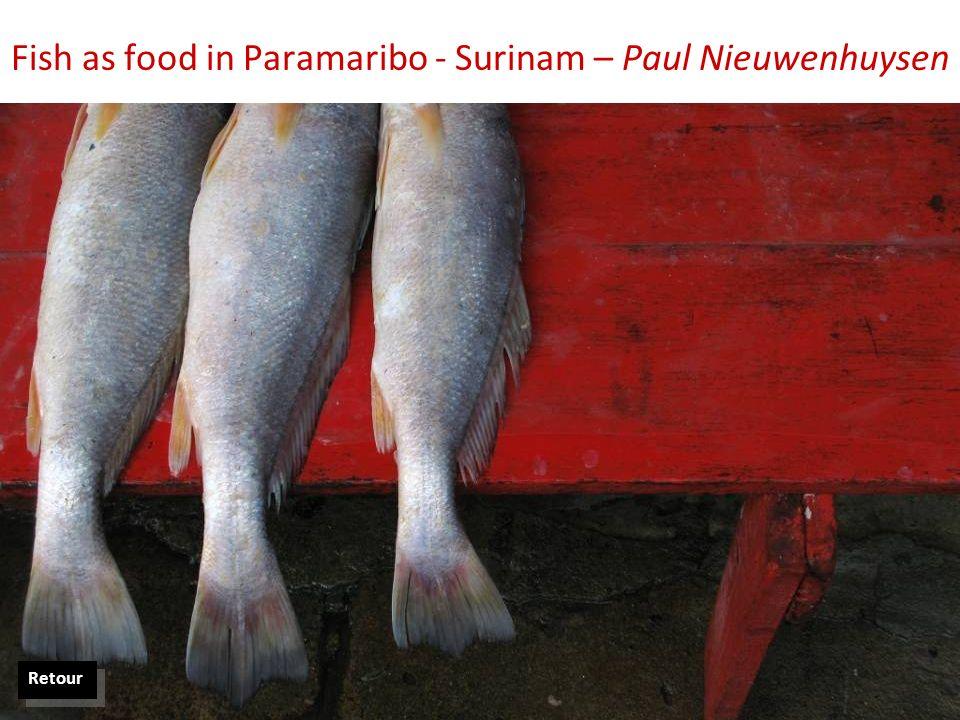 Fish as food in Paramaribo - Surinam – Paul Nieuwenhuysen Retour
