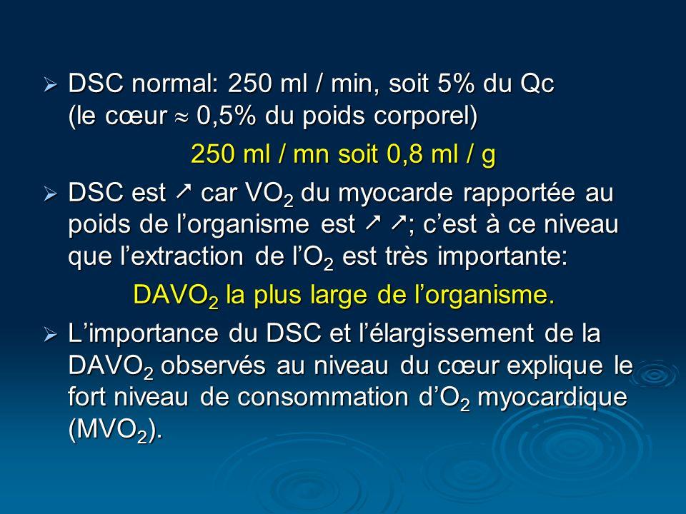 DSC normal: 250 ml / min, soit 5% du Qc (le cœur 0,5% du poids corporel) DSC normal: 250 ml / min, soit 5% du Qc (le cœur 0,5% du poids corporel) 250