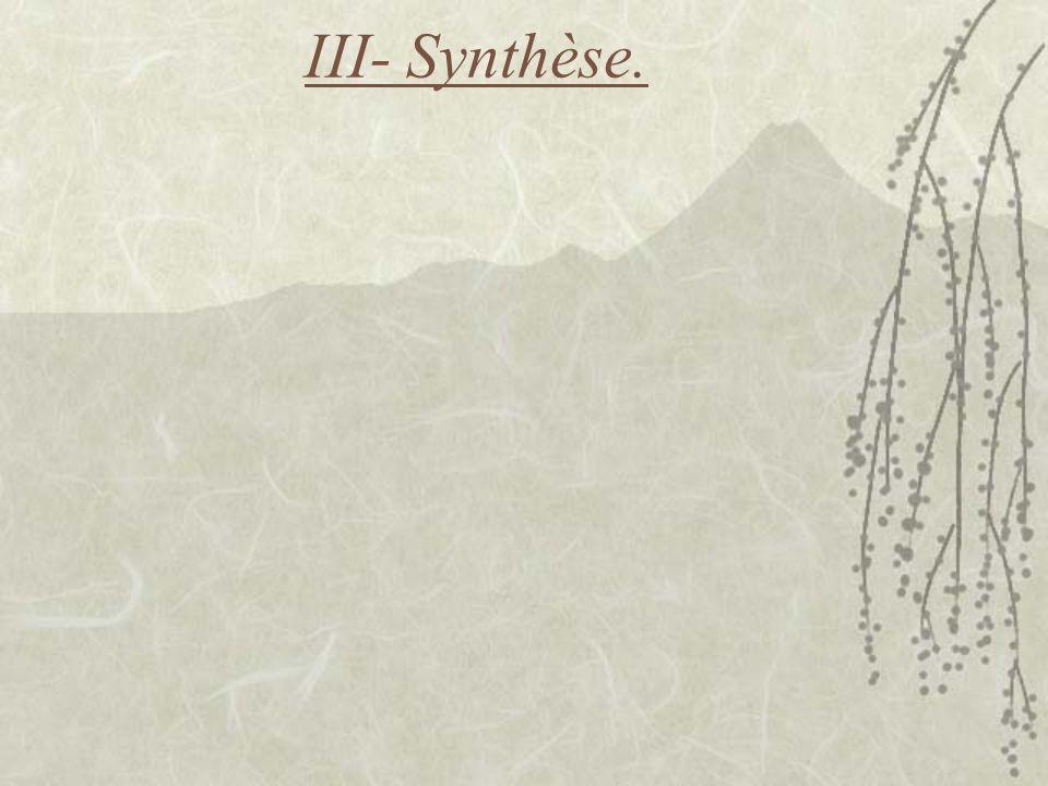 III- Synthèse.