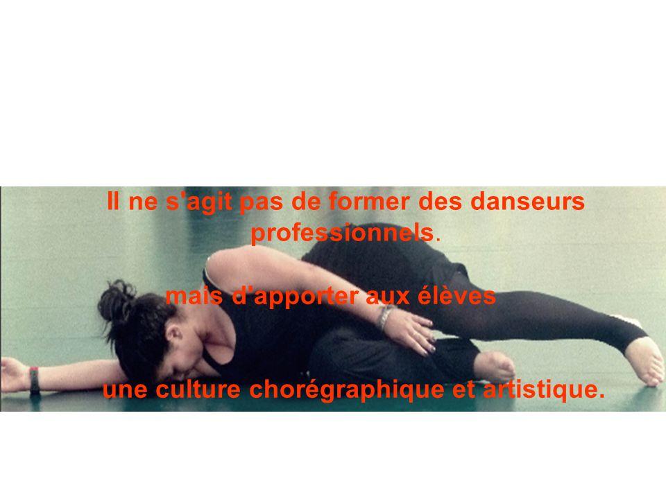 Cette option vise trois objectifs: - poser des repères dans le monde de la danse: histoire, œuvres, pratiques....