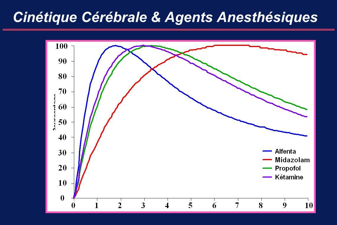 Cinétique Cérébrale & Agents Anesthésiques