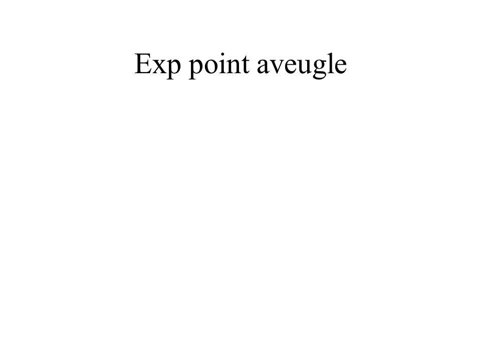 Exp point aveugle