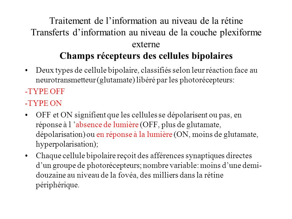 Traitement de linformation au niveau de la rétine Transferts dinformation au niveau de la couche plexiforme externe Champs récepteurs des cellules bip