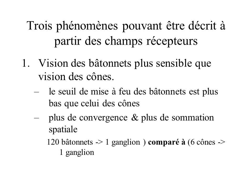 Trois phénomènes pouvant être décrit à partir des champs récepteurs 1.Vision des bâtonnets plus sensible que vision des cônes. –le seuil de mise à feu