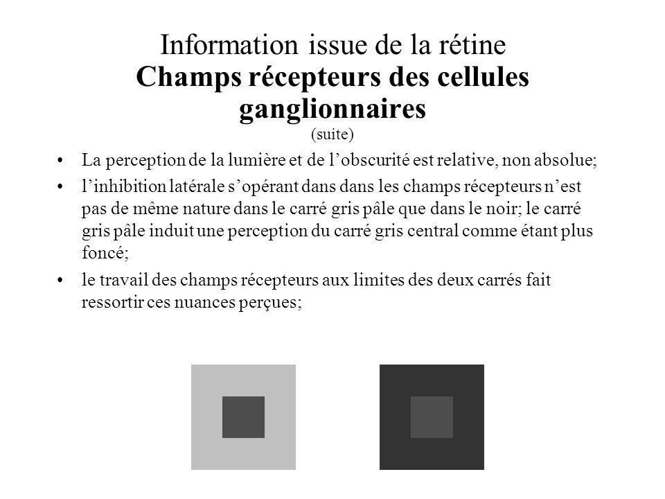 Information issue de la rétine Champs récepteurs des cellules ganglionnaires (suite) La perception de la lumière et de lobscurité est relative, non ab
