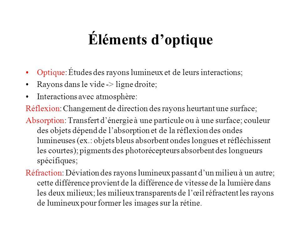 Éléments doptique Optique: Études des rayons lumineux et de leurs interactions; Rayons dans le vide -> ligne droite; Interactions avec atmosphère: Réf