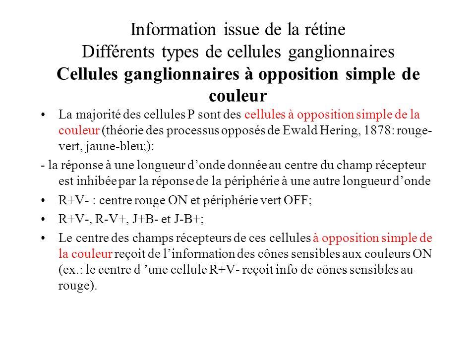 Information issue de la rétine Différents types de cellules ganglionnaires Cellules ganglionnaires à opposition simple de couleur La majorité des cell