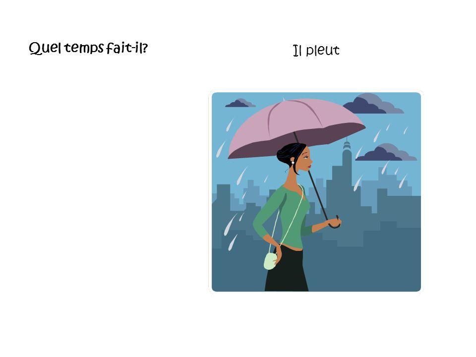 Quel temps fait-il? Il pleut à verse