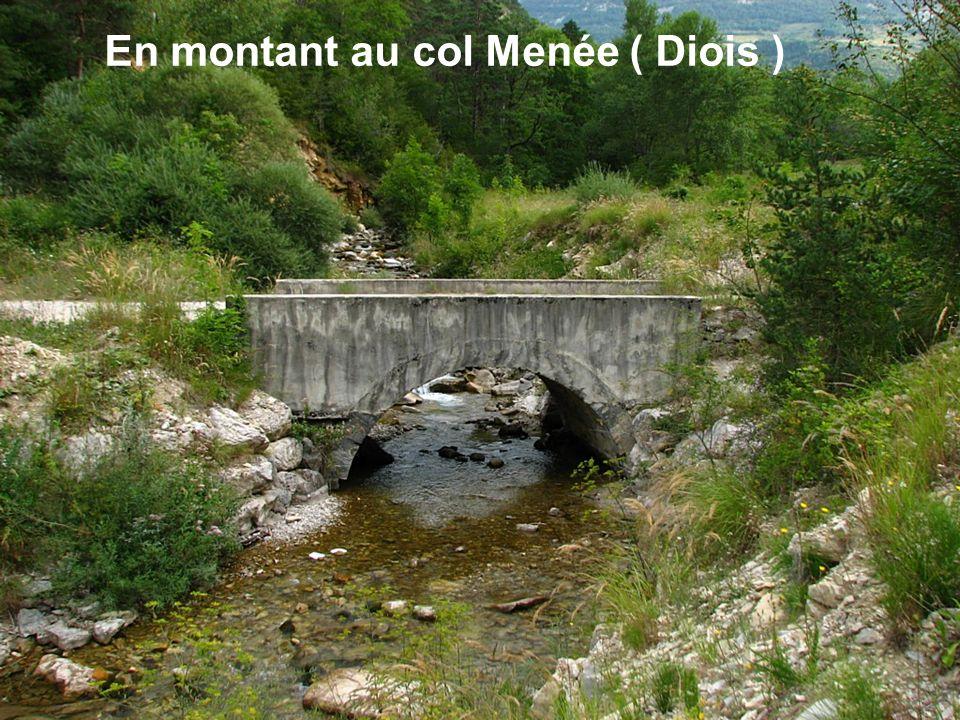 Sur le GR 10 à Mérens ( Hautes Pyrénées )