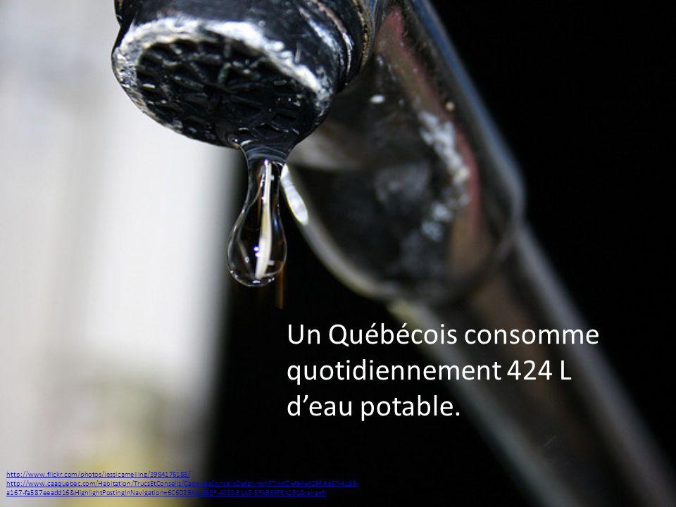 Un Québécois consomme quotidiennement 424 L deau potable. http://www.flickr.com/photos/jessicamelling/3984176185/ http://www.caaquebec.com/Habitation/