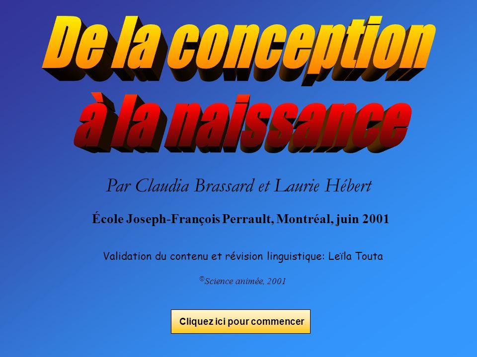 Par Claudia Brassard et Laurie Hébert École Joseph-François Perrault, Montréal, juin 2001 Validation du contenu et révision linguistique: Leïla Touta Science animée, 2001 Cliquez ici pour commencer