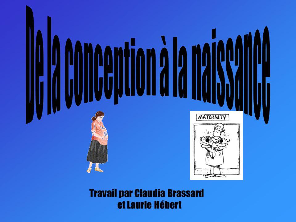 Travail par Claudia Brassard et Laurie Hébert